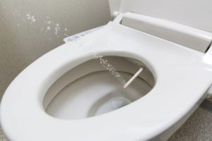 Toilette japonaise et lavante tout confort