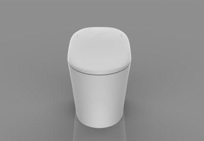 Toilette japonaise céramique - C-Kleent