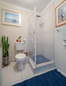 douchette de wc
